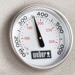 weber q320 gas grill thermometer